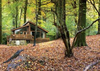Forest-of-Dean-Lodges