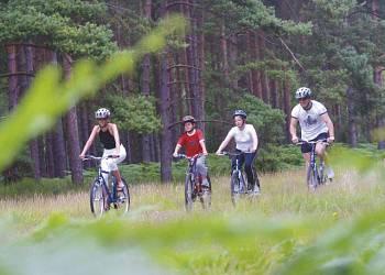Oakdene-Forest-Park