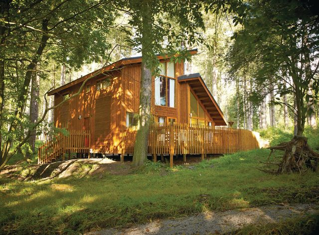 Blackwood Forest Lodges, Micheldever,Hampshire,England
